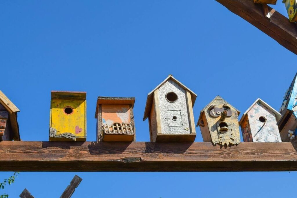 Can you put two Bird boxes together?