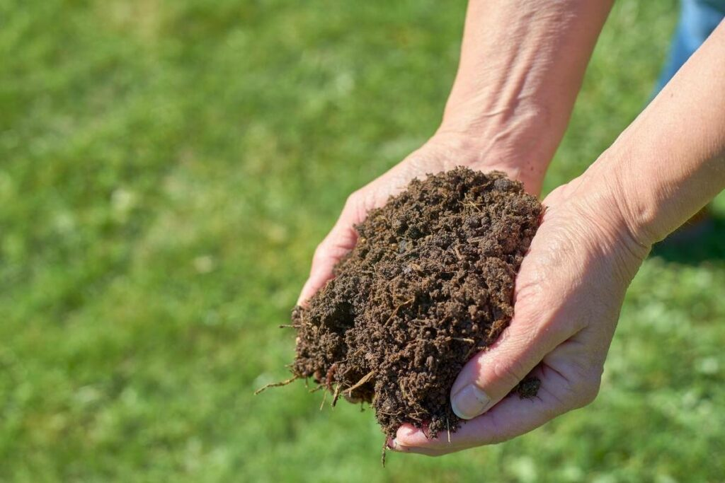 When Should I Add Compost to My Garden?