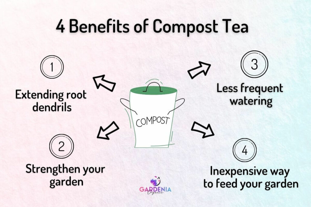 What Are the Benefits of Compost Tea?