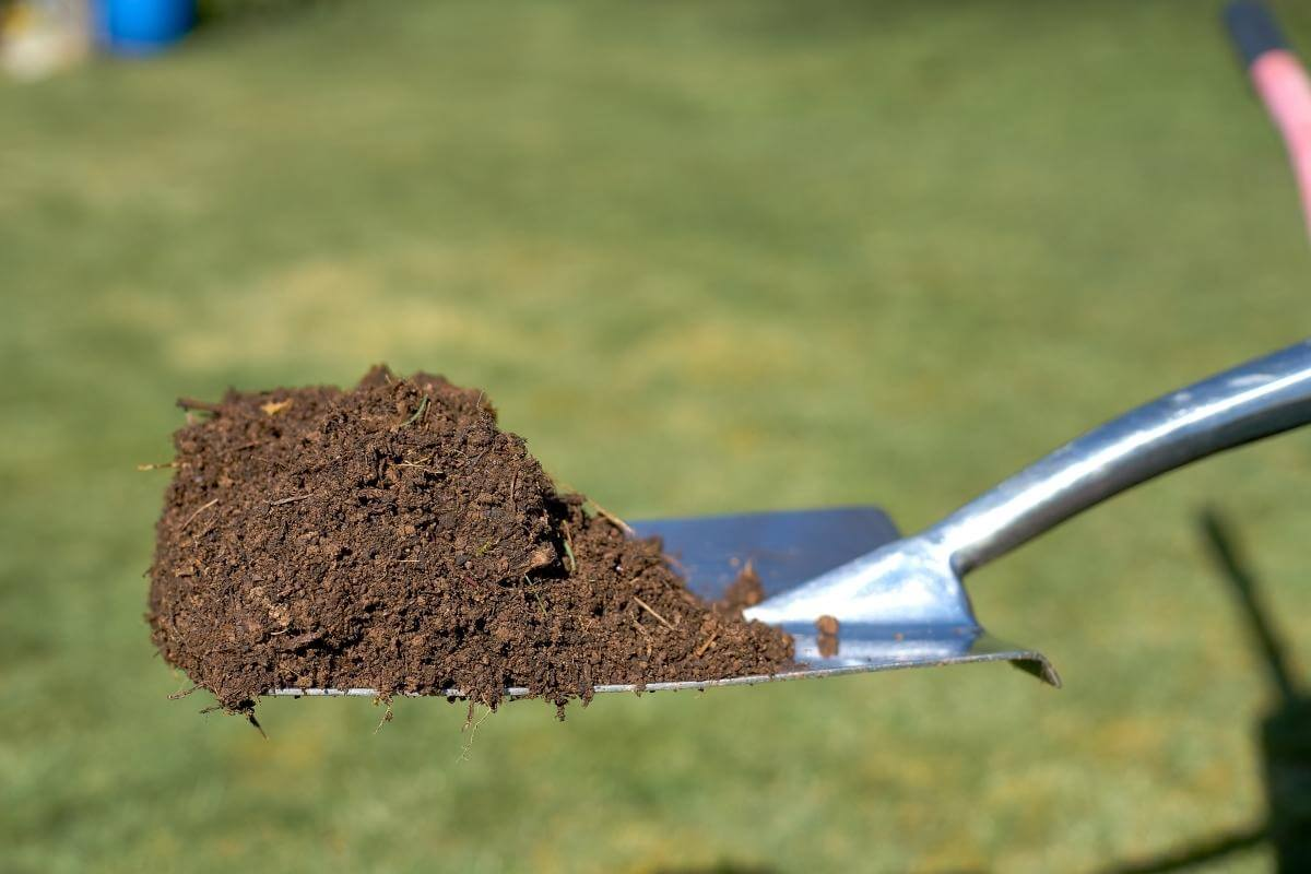 How Much Compost to Mix with Soil