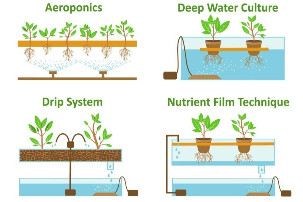 Different types of systems for growing plants