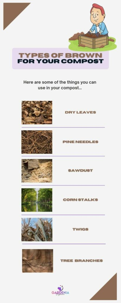 Types of browns you can use in compost
