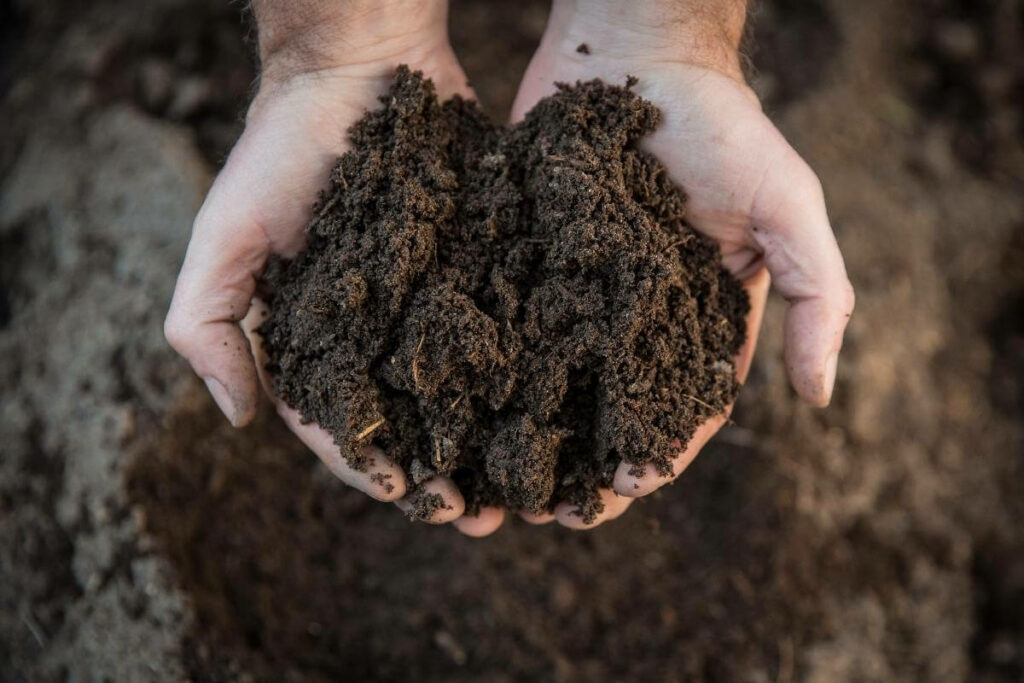 Compost when overseeding is especially needed