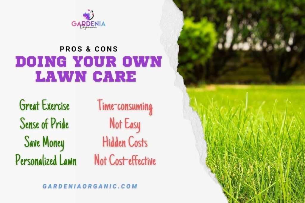 Doing Your Own Lawn Care: Pros and Cons