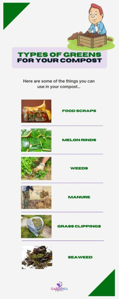 Types of greens in compost