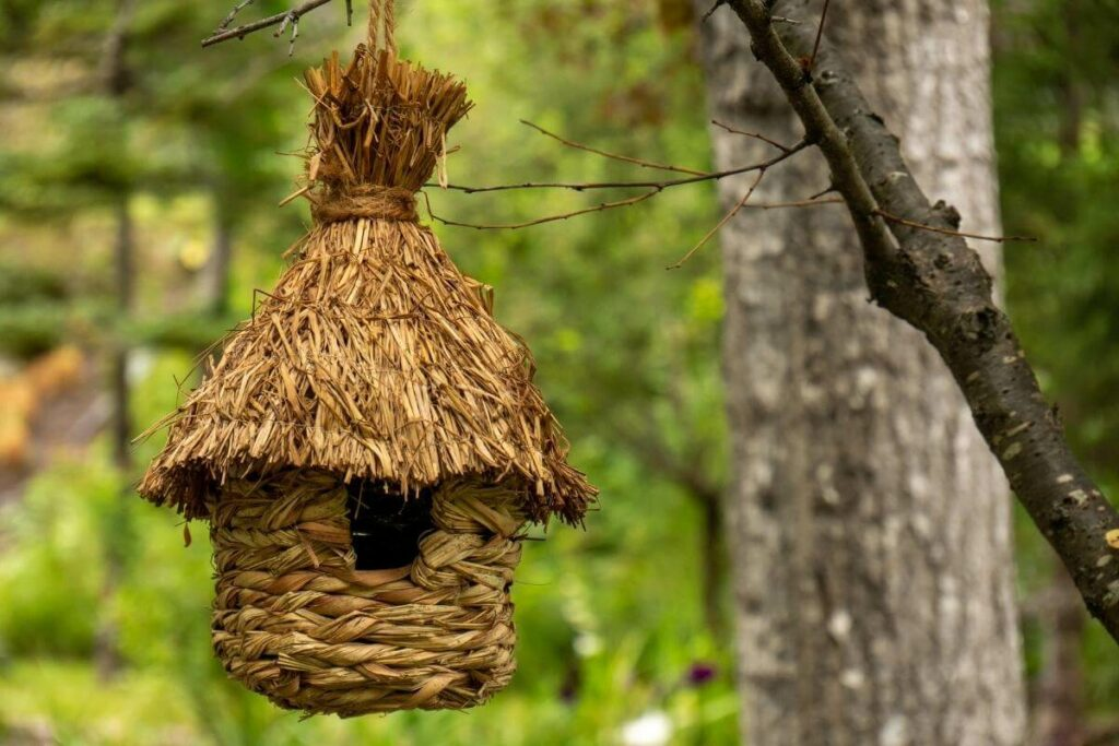 Set up hay birdhouse for winter