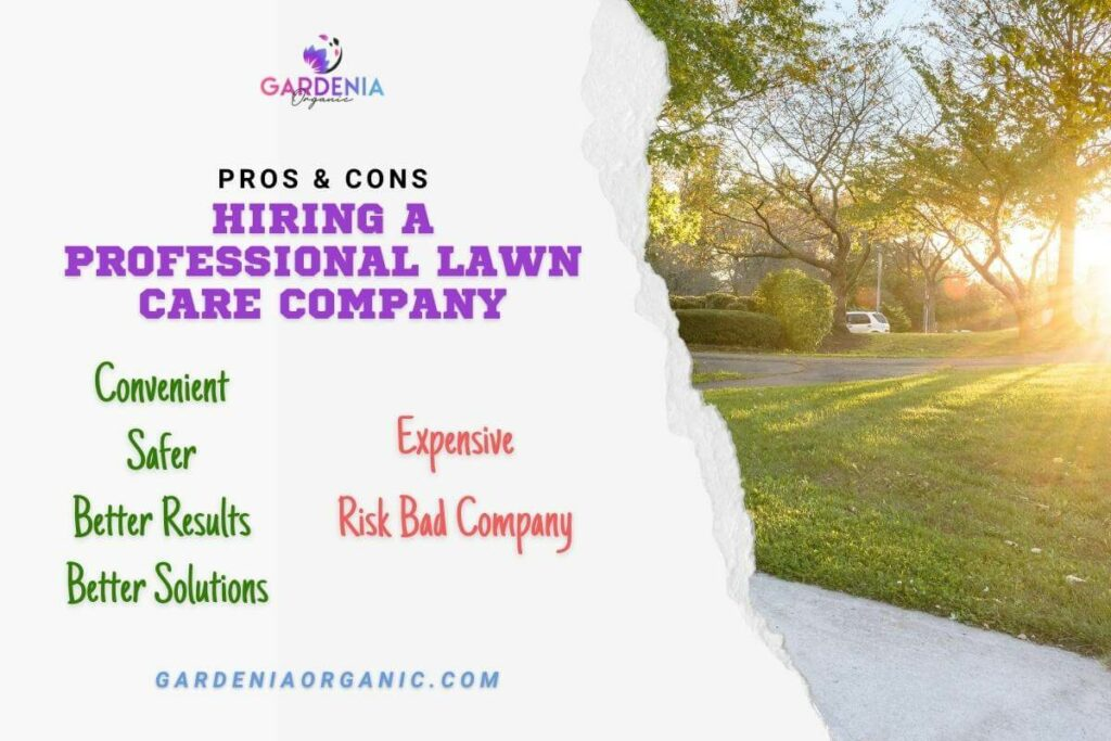 Hiring a Professional Lawn Care Company: Pros and Cons