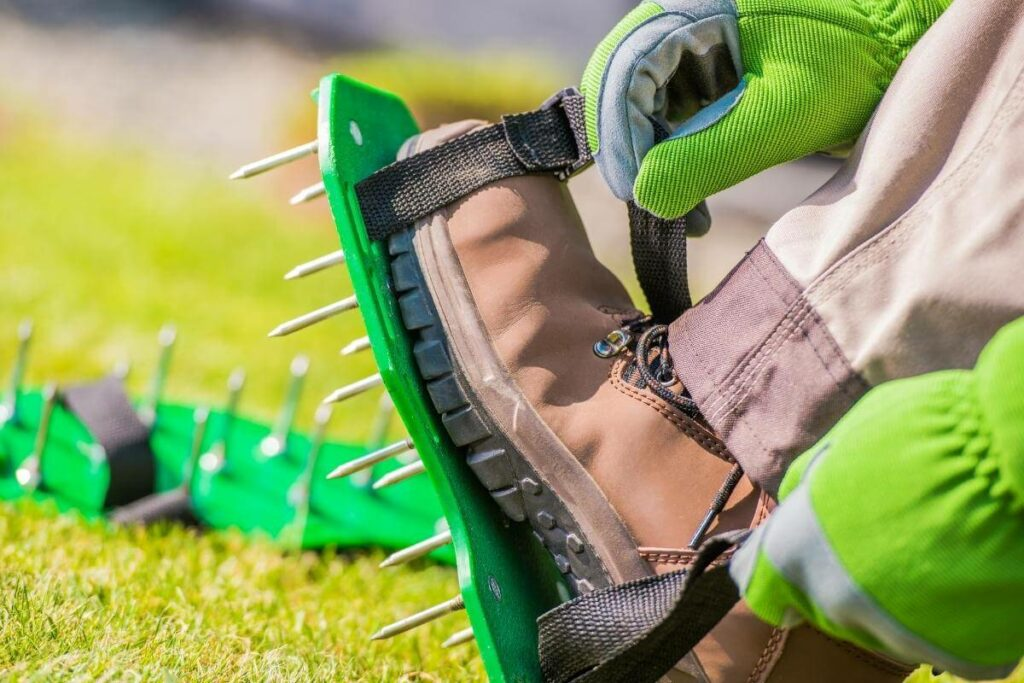 How to Aerate a Lawn?