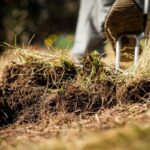 How to Improve Soil Aeration