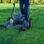 Lawn Care vs. Lawn Maintenance: What's the Difference?