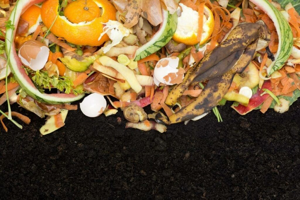 How to Layer Browns and Greens in a Compost Pile