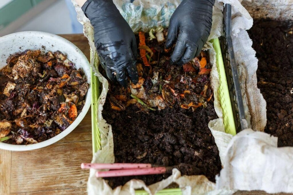 Vermicomposting maintenance not easy
