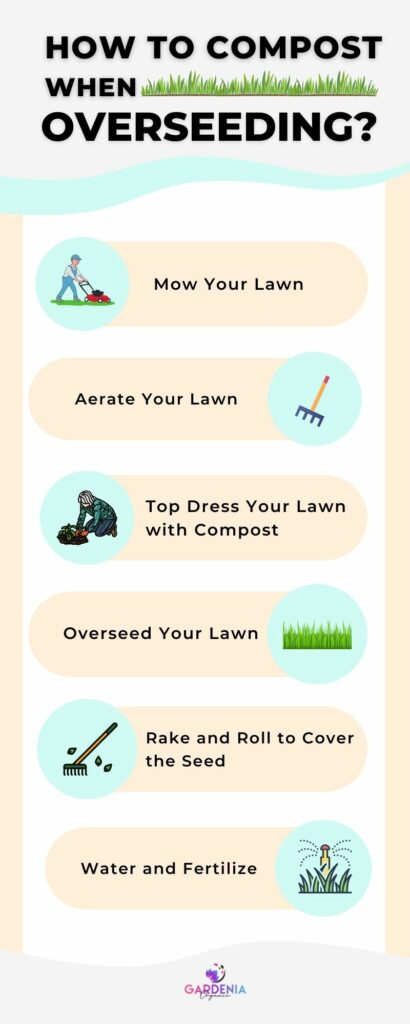 Overseeding infographic steps
