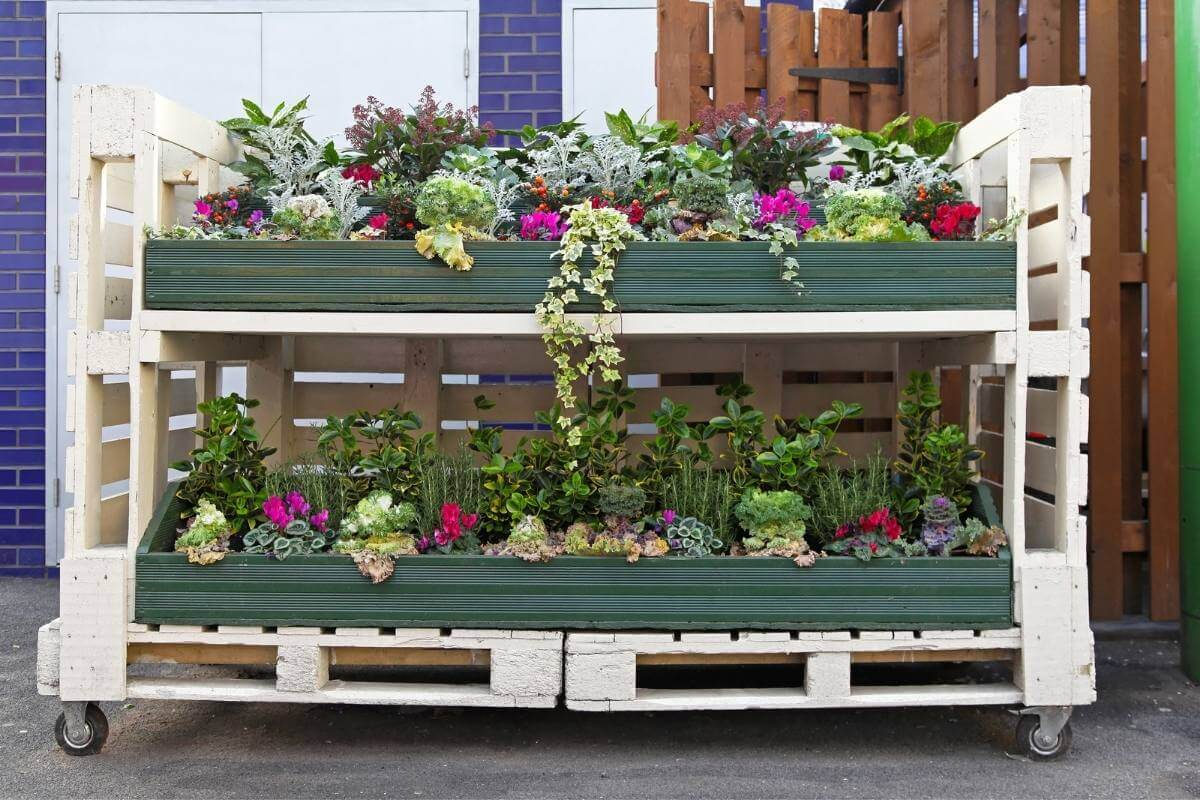 Perfect plants for pallet gardens
