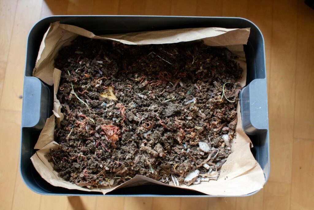 Choose the right vermicompost product