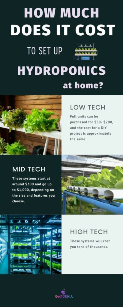 Set up hydroponics at home price