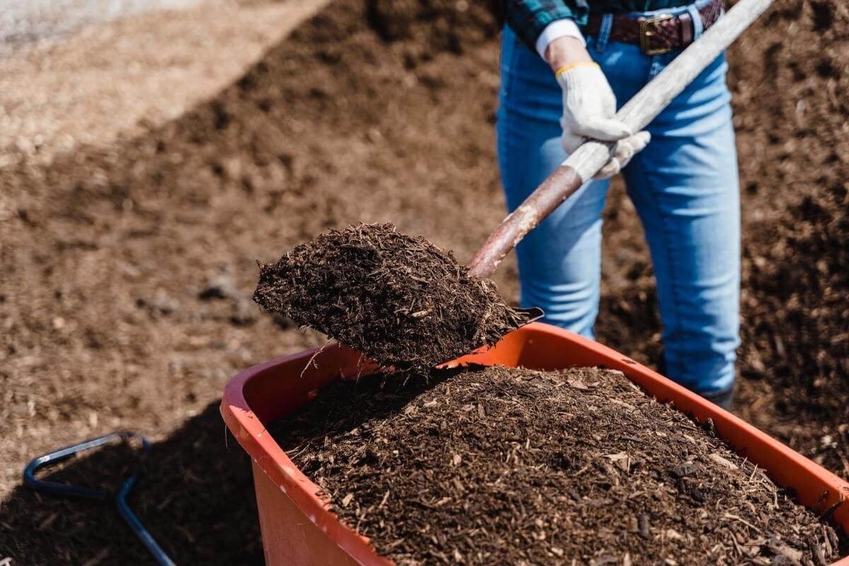 The 4 Types of Aerobic Composting Explained