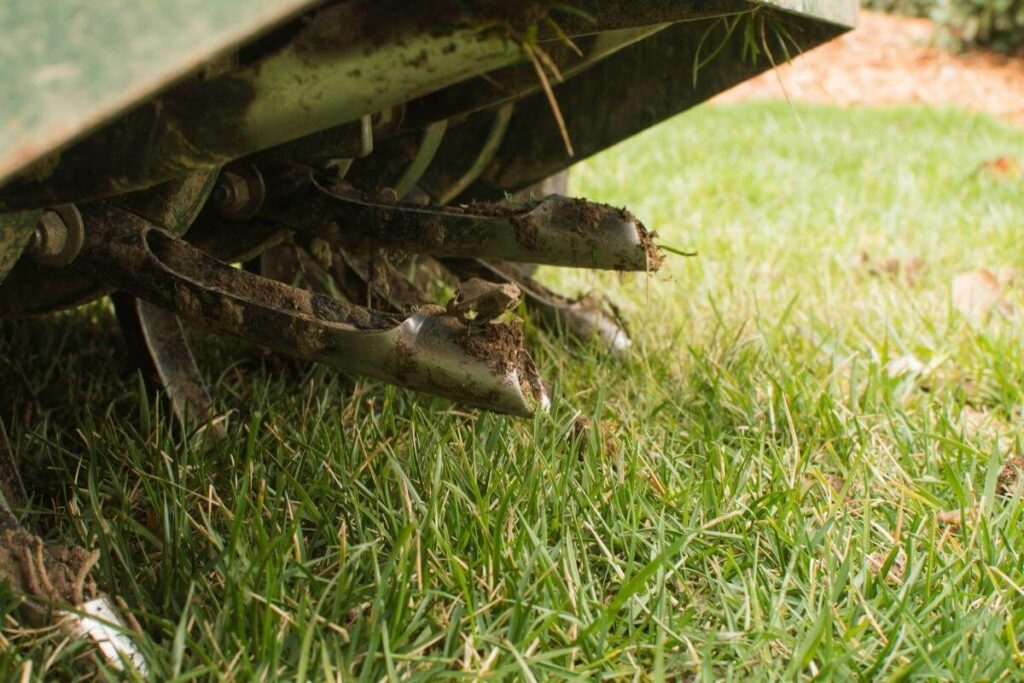 How Do You Know That Your Lawn Needs Aeration?